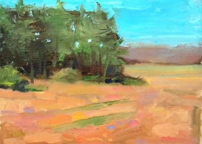 Pine Gove