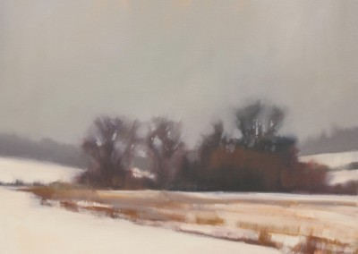 Cold Fields